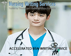 Accelerated BSN Writing Services