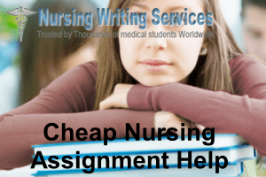 Cheap Nursing Assignment Help