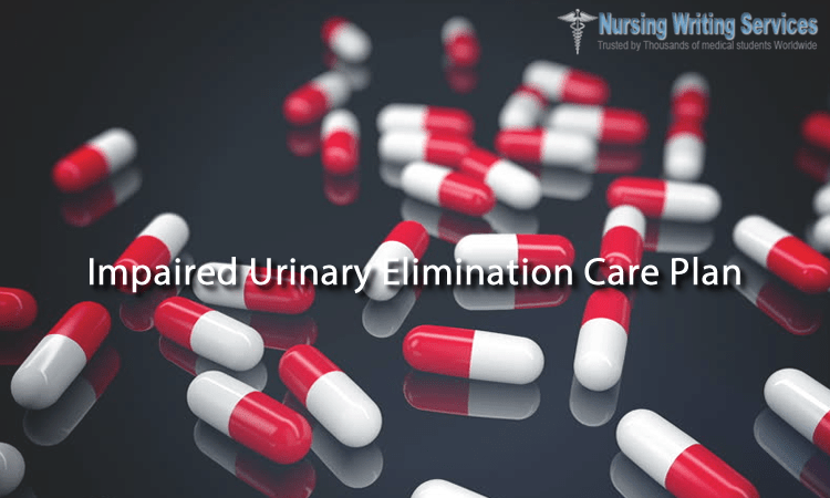 Impaired Urinary Elimination Care Plan Writing Help