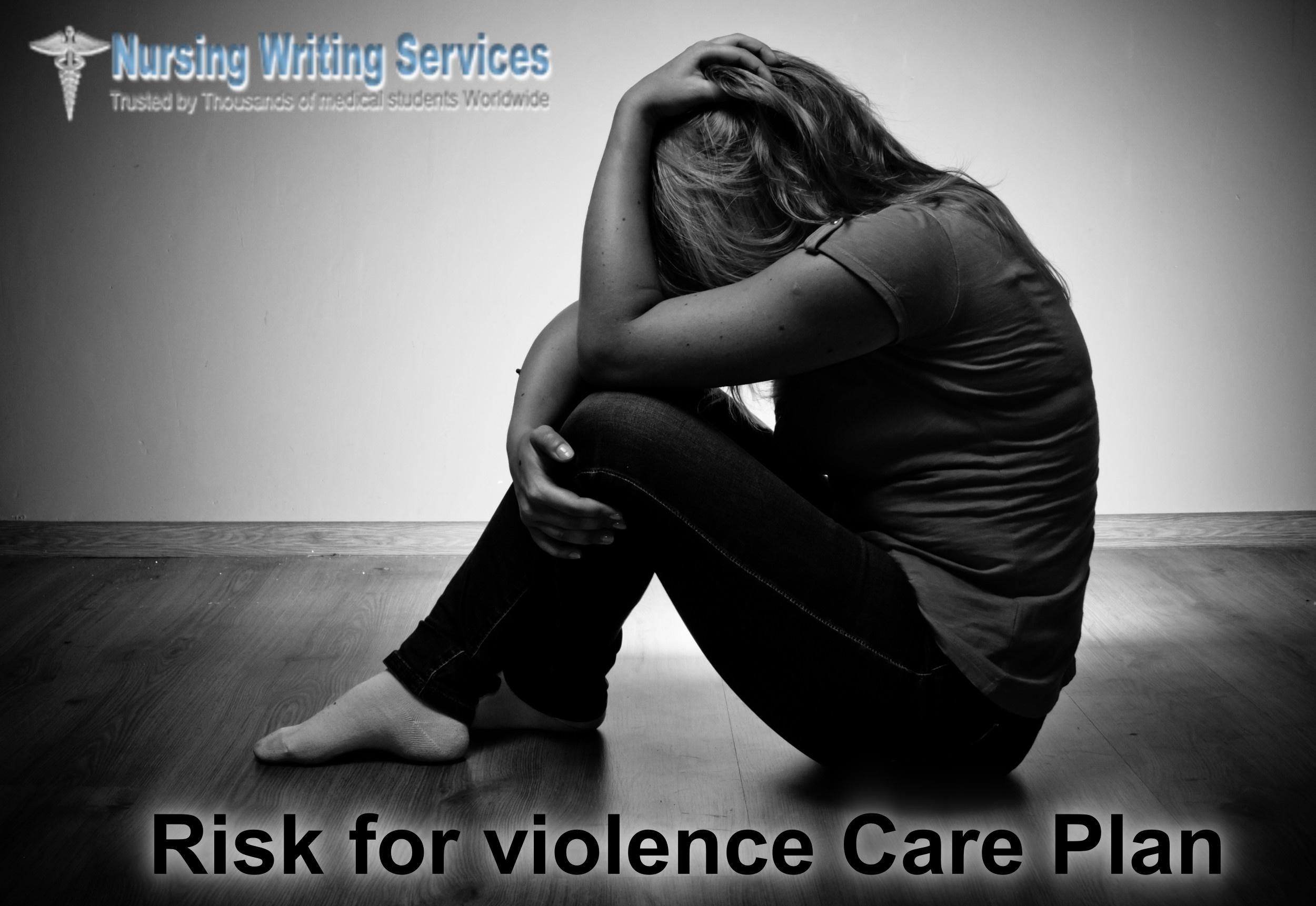 Risk for violence Care Plan Writing Services